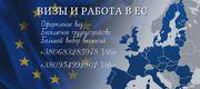 Офіційна робота в Польщі для кожного та легальні документи