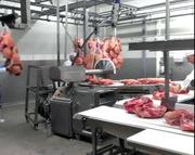 Работа в Польше на польско-немецком мясокомбинате