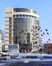 Тонировка солнцезащитной пленкой стеклопакетов домов,  офисов,  пром.пом