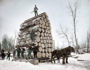Покупаем дрова.
